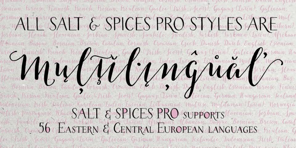 Salt&Spices-Pro-1440x720_10