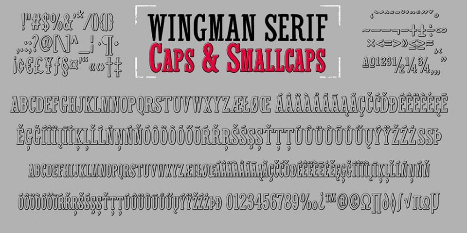 presentatie-Wingman-11