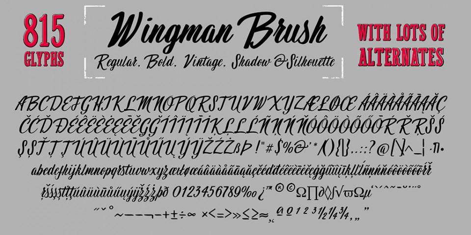 presentatie-Wingman-9