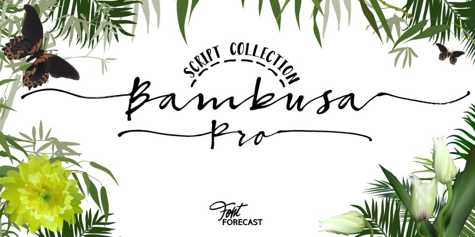 Fontforecast_Bambusa Pro-1440x720_01*