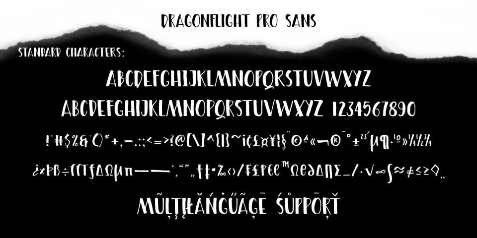 DRAGONFLIGHT PRO_Poster_1440x720_10